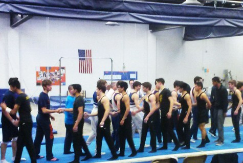 Boys gymnastics team sweeps senior night