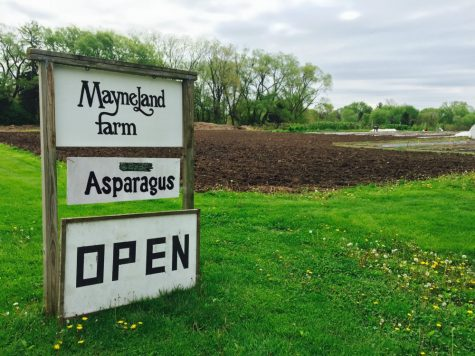 Mayneland Farm cultivates family tradition for 40 years
