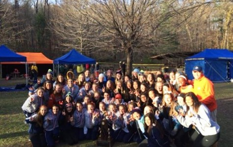 Girls cross country claims IHSA 3A championship
