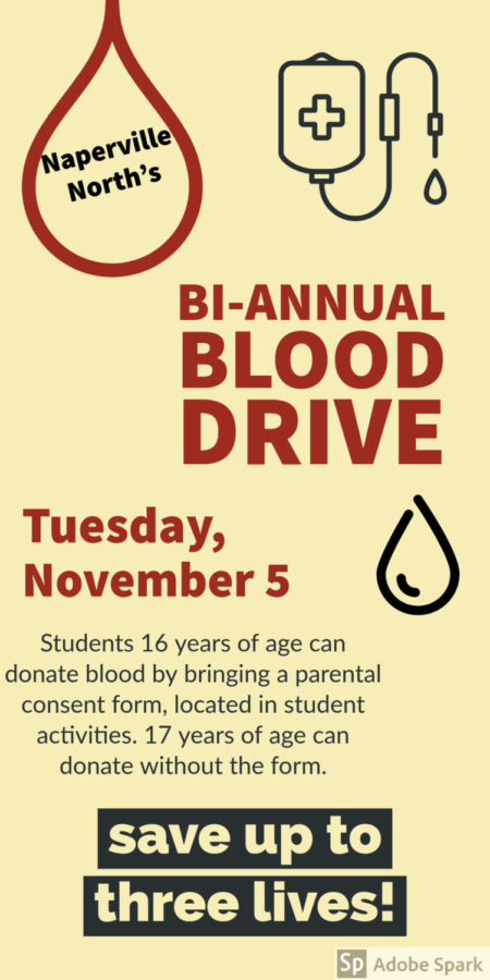 Naperville+North+hosts+bi-annual+blood+drive