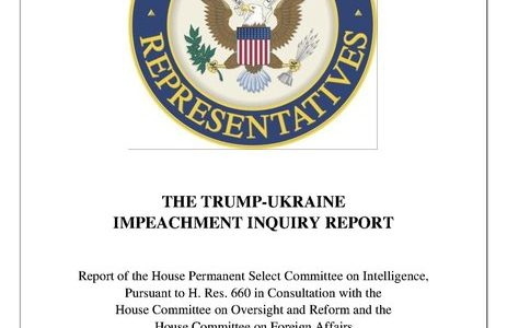 In a Nutshell Special Report: Impeachment Briefing